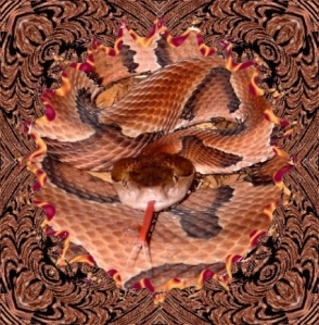 144snakes