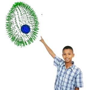234unicellular